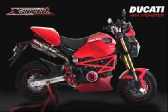 projekt Ducati