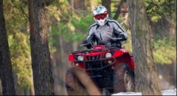 quad w lesie