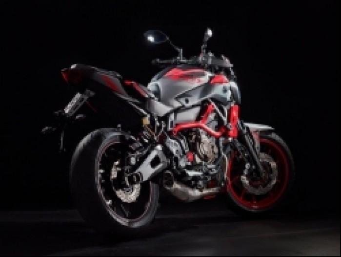 Yamaha MT07 Moto Cage 1