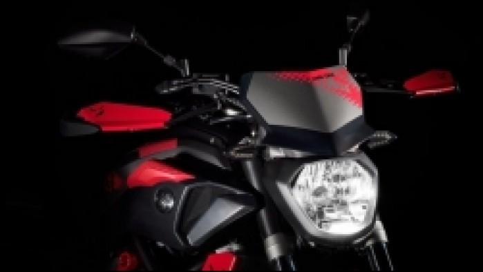 Yamaha MT07 Moto Cage 17