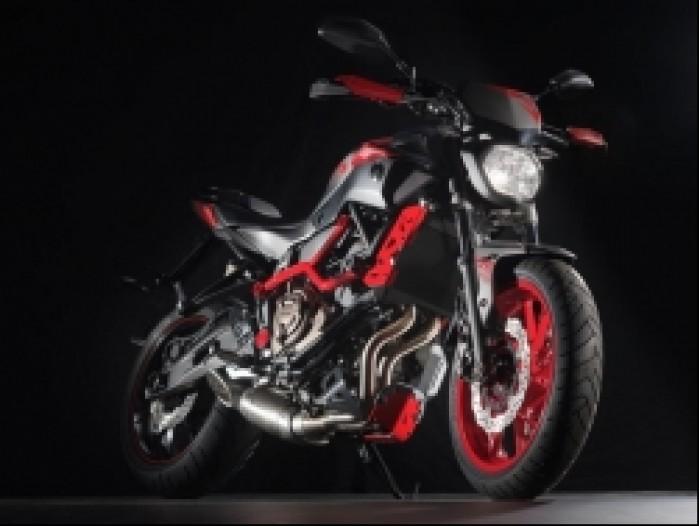 Yamaha MT07 Moto Cage 21