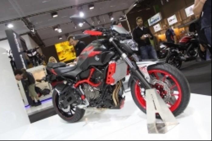 Yamaha MT07 Moto Cage 5
