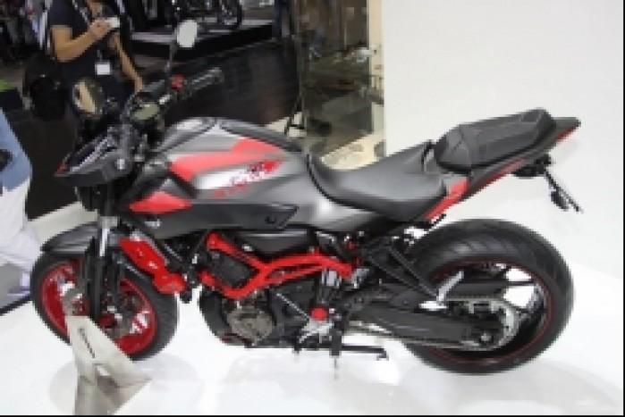Yamaha MT07 Moto Cage 6
