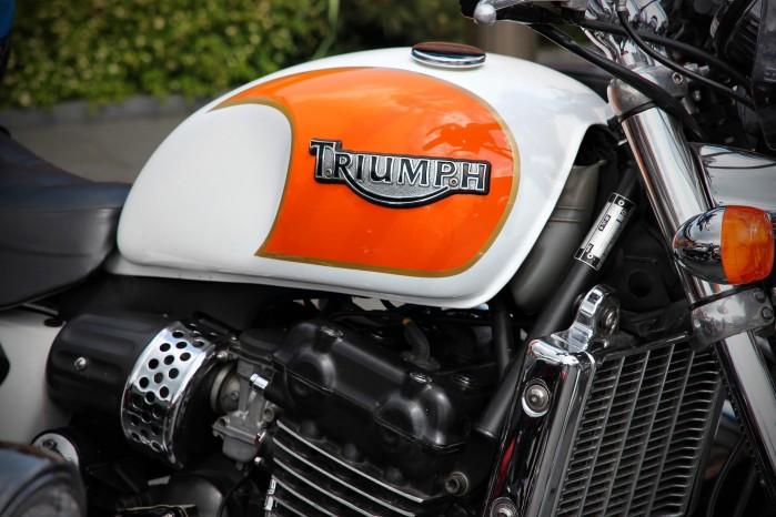 Triumph bak