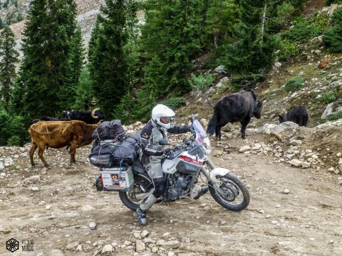 Wyprawa motocyklowa Volta ao Mundo 12
