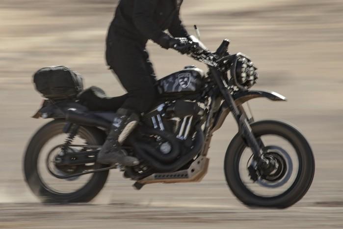 Harley Davidson 1200 Roadster custom pustynia