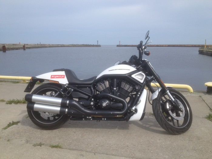 harley davidson vrod night rod special