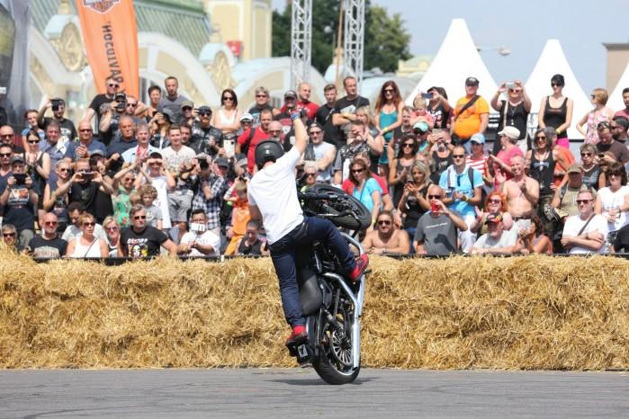 Maciej DOP Harley Davidson Stunt 04