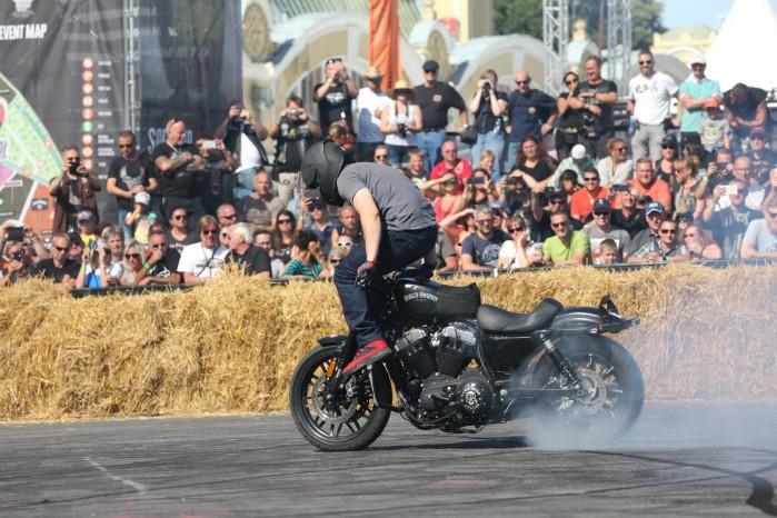 Maciej DOP Harley Davidson Stunt 07