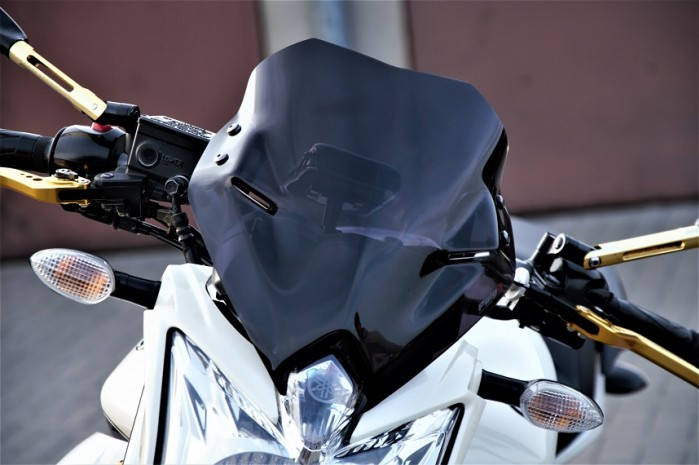Yamaha XJ6N Custom 05