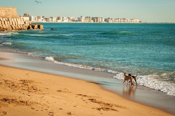 costa del sol plaza
