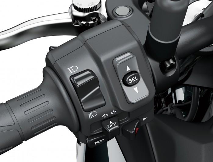 Kawasaki Z900MY2020 03 detail switch