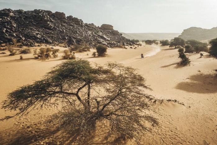 Africa Eco Race3