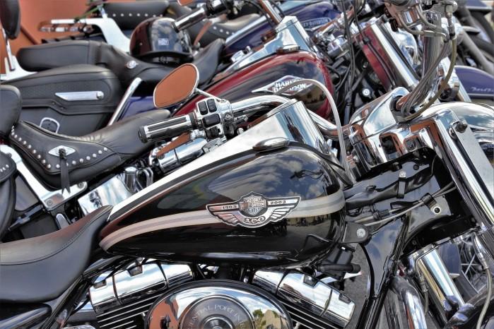 harley davidson motocykle plener