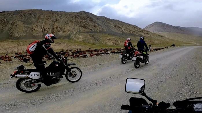 Cardo Packtalk Bold test w grupie 9 motocykli 2000 km w Kirgistanie