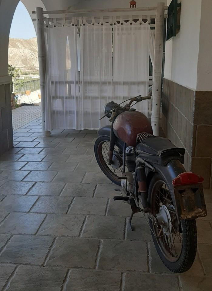 41 Moto Angeles