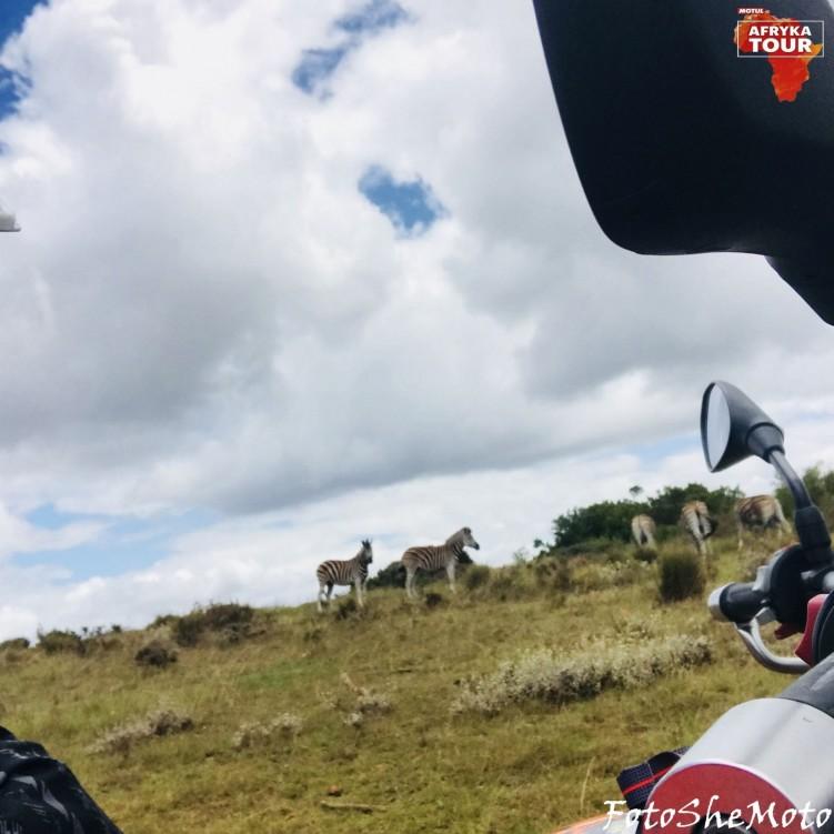 RPA na motocyklu 61