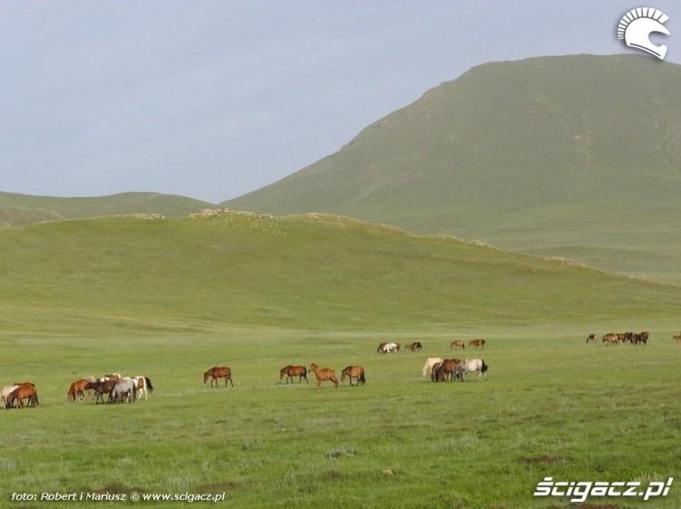Mongolia wyprawa motocyklami 9