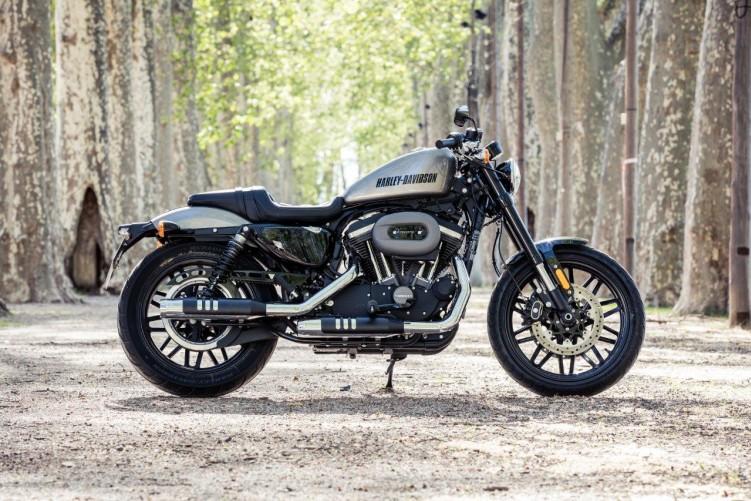Harley-Davidson-Roadster-1200 19254 1