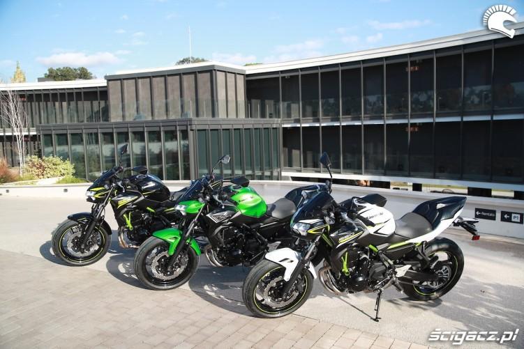 Kawasaki Z650 2020 kolory