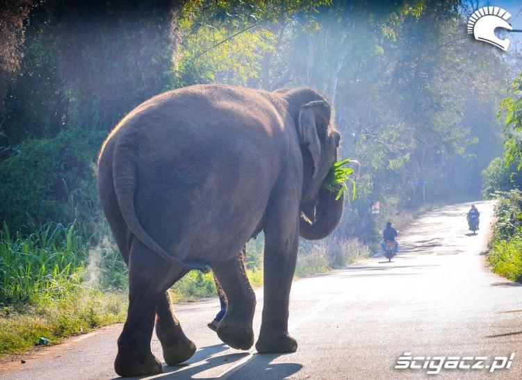 Tajlandia na motocyklu ADVPoland 102