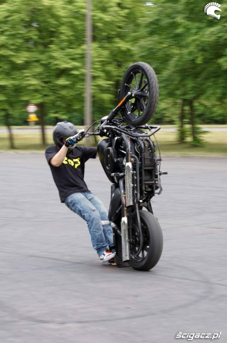 DOP Harley guma