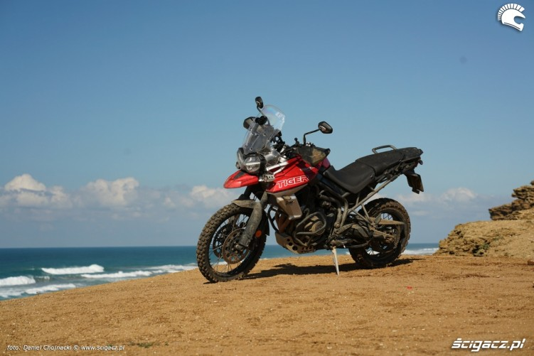 nowy tiger 800