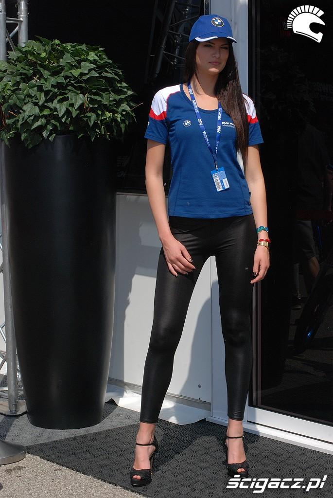 BMW dziewczyna na paddocku