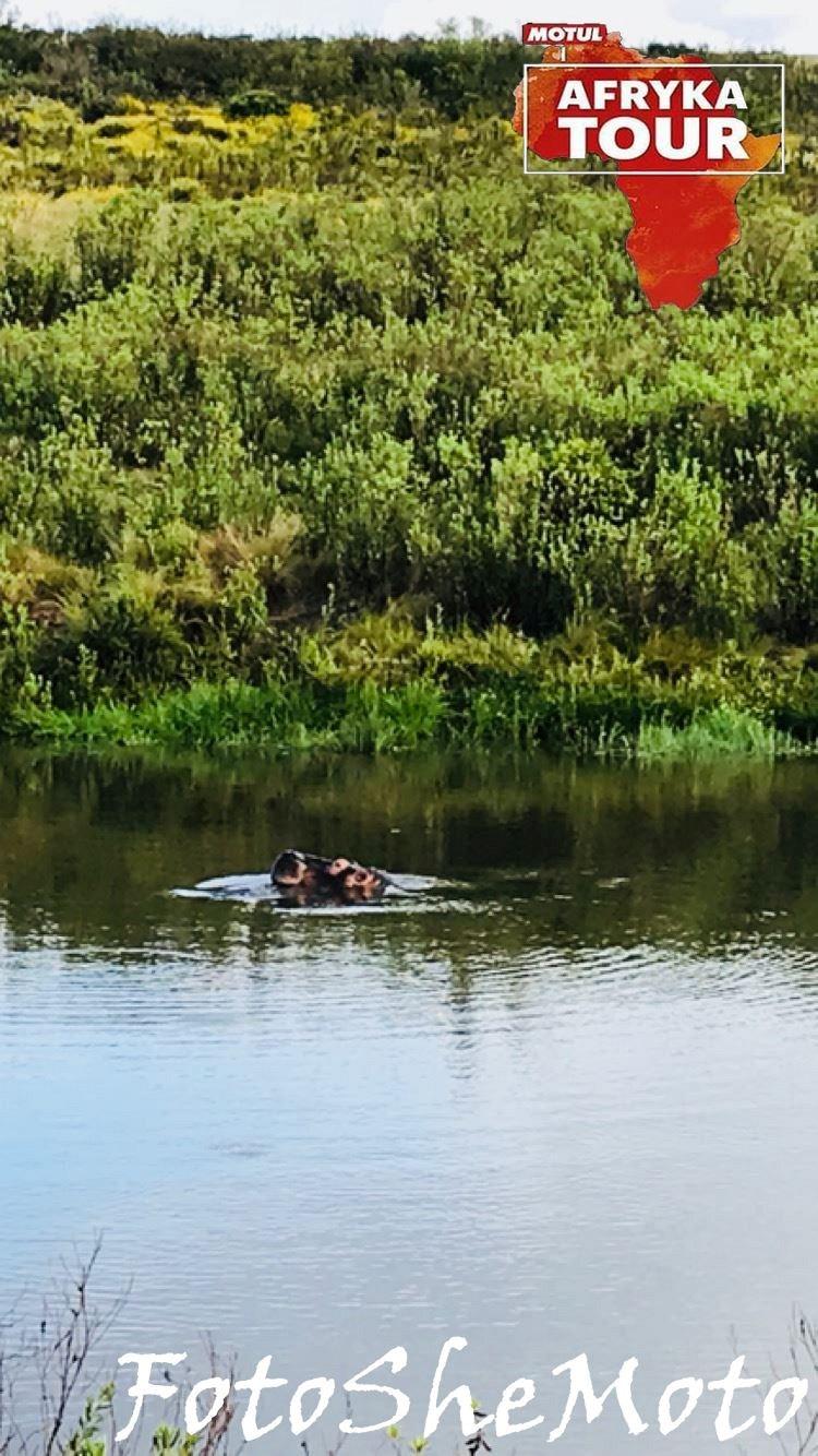 Motocyklowa wyprawa RPA Motul 19