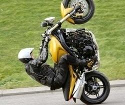 Speed Triple wheelie
