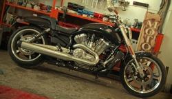 miesniak w garazu Harley Davidson V Rod Muscle
