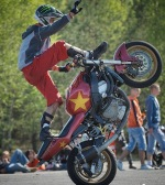 Procent Wheelie
