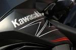 Kawasaki Z800 logo