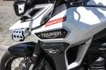 logo Triumph Explorer XD