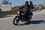 Triumph Bonneville T100 Brzoza