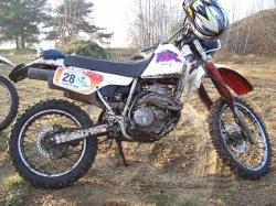 XLR 250 w sloncu
