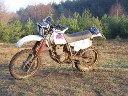 XLR 250 w trawie