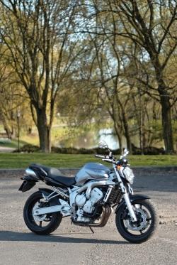 Yamaha FZ6 02