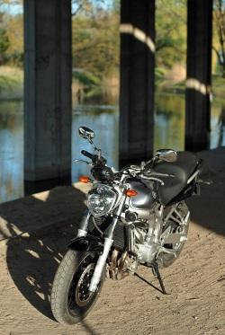Yamaha FZ6 15