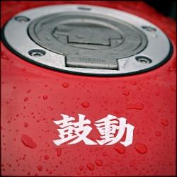 yamaha mt-03 japonskie krzaczki smaczki