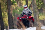 quad w lesie grizzly 350 yamaha test a mg 0127