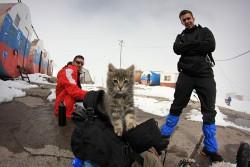 Przy beczkach na Elbrusie od lewej Ormianin kot Polak