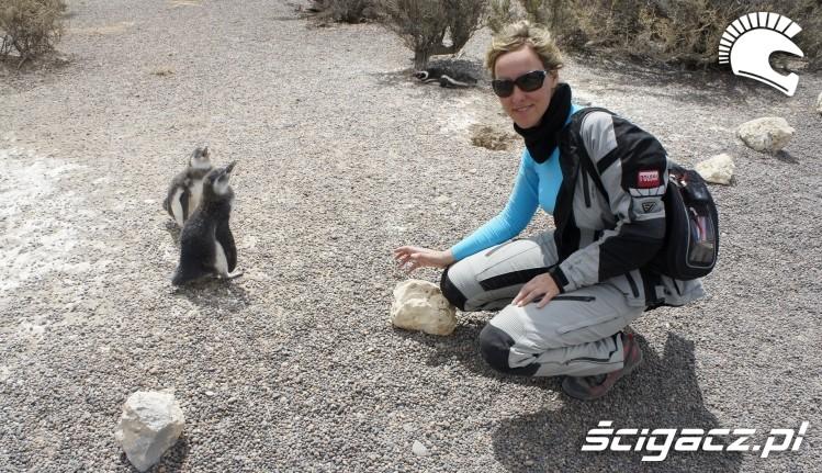 z pingwinem wyprawa motocyklowa do Ameryki Poludniowej