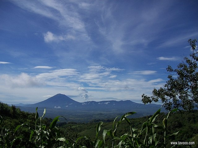 18 Widok - Salwador