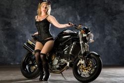 Ducati Monster S4R kroliczek