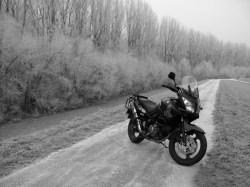 Suzuki vstrom black white