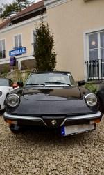 Forza Italia 2017 24